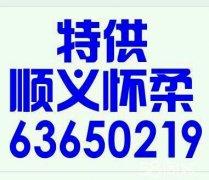 顺义陪练公司6361717